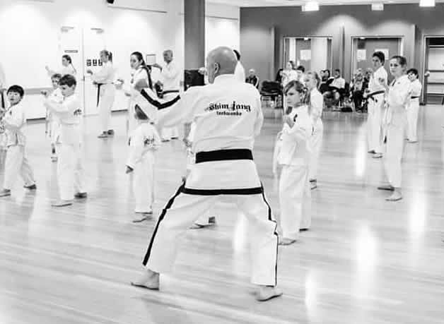 About Shimjang Taekwondo - Master Les Hicks teaching a Class