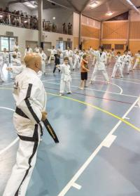 Image 4 for Westbury Open Day/Grading